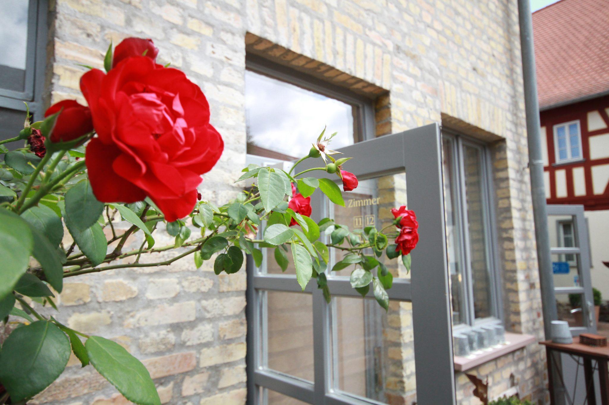 Wohnen in historischem ambiente kleine residenz am schloss for Wohnen ambiente